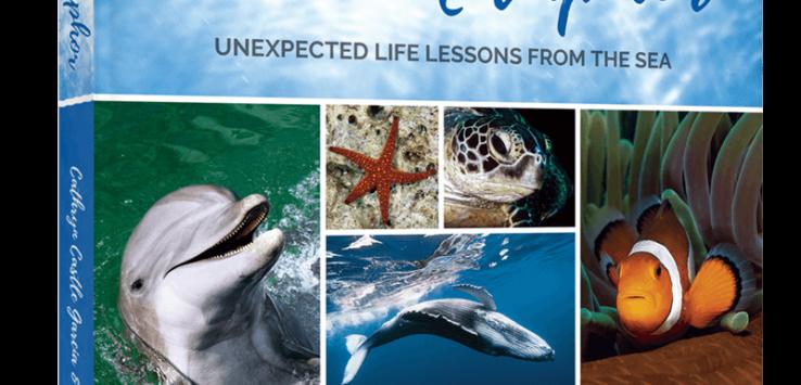 Ocean Metaphor Book