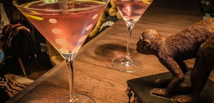 Terra Incognita Explorers Bar Martini Jett Britnell